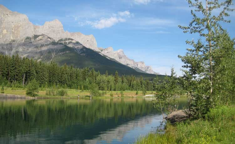 Website Design Canmore